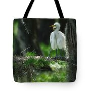 Baby Great Egrets With Nest Tote Bag