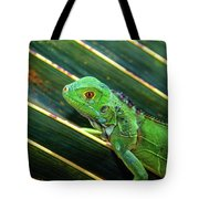 Baby Green Iguana Tote Bag