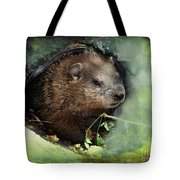Baby Groundhog Tote Bag