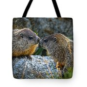 Baby Groundhogs Kissing Tote Bag by Bob Orsillo