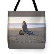 Baby Gull At Dusk Tote Bag