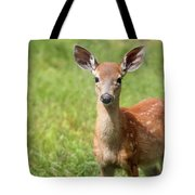 Baby In The Tall Grass Tote Bag