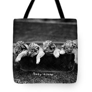 Baby Lions, C1900 Tote Bag