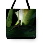 Baby Lizard Paths Lit And Dark Tote Bag
