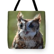 Cute Screetch Owl Tote Bag