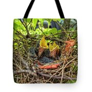 Baby Mockingbirds Tote Bag