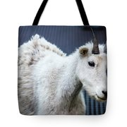 Baby Mountain Goat Tote Bag