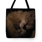 Baby Of Mine Tote Bag