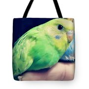 Baby Parrakeets 2 Tote Bag