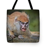Baby Patas Monkey On Guard  Tote Bag