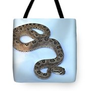 Baby Rattler Tote Bag