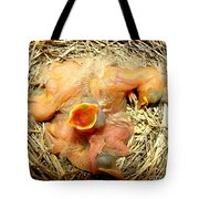 Baby Robins Newly Hatched Tote Bag