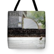 Baby Seagull Running In The Rain Tote Bag by Bob Orsillo