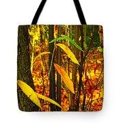 Baby Tree Foliage Tote Bag