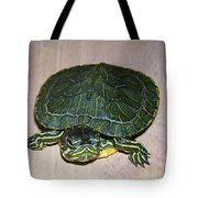 Baby Turtle Looking Up Tote Bag