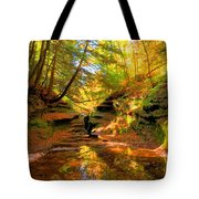 Bach Hollow Tote Bag
