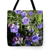 Bachelor Buttons-1 Tote Bag