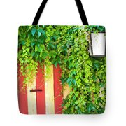 Back Alley Color Tote Bag