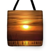 Back Bay Sunset Tote Bag