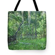 Back In Time In Florida Tote Bag
