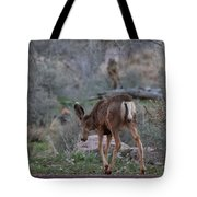 Back Into The Woods - 2 Tote Bag