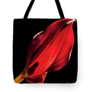 Back Lit Black Calla Lily Tote Bag