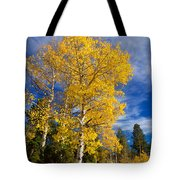 Back Road Beauty Tote Bag