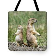 Back To Back Prairie Dogs Tote Bag