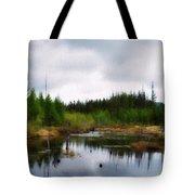 Backcountry Lake - Adirondacks Tote Bag