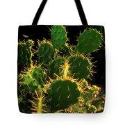 Backlit Cacti Tote Bag