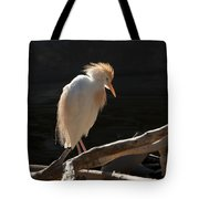 Backlit Egret Tote Bag
