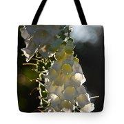 Backlit Foxgloves 2 Tote Bag