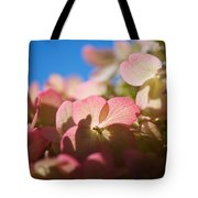 Backlit Hydrangea Tote Bag