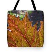 Backlit Leaf 2 Tote Bag