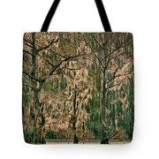 Backlit Moss-covered Trees Caddo Lake Texas Tote Bag