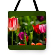 Backlit  Tote Bag
