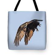 Backlit Osprey Takes Flight Tote Bag