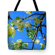 Backlit White Tree Blossoms Tote Bag