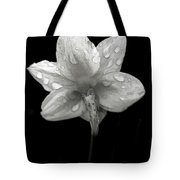 Backside Daffodil Dew Tote Bag