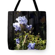 Backyard 1 Tote Bag