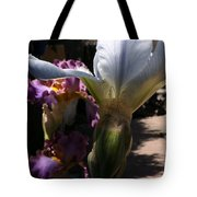 Backyard 4 Tote Bag