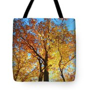 Backyard Beauty Tote Bag