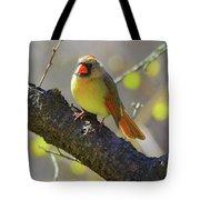 Backyard Bird Female Northern Cardinal Tote Bag