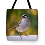 Backyard Bird - White-crowned Sparrow Tote Bag