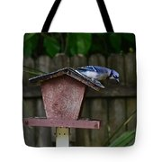 Backyard Blue Jay Tote Bag