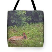 Backyard Bunny Tote Bag