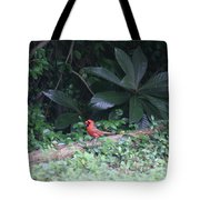 Backyard Friend Tote Bag