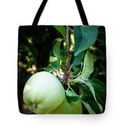 Backyard Garden Series - 2 Apples Tote Bag