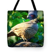 Backyard Garden Series - Quail In A Pear Tree Tote Bag