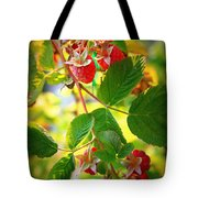 Backyard Garden Series - Sunlight On Raspberries Tote Bag